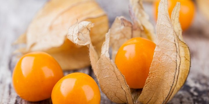 5 Exceptionally Delicious and Rare Fruits Physalis
